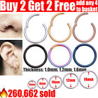 Surgical Steel Nose Ring Septum Clicker Hinge Segment Ear Helix Tragus Ring Hoop <br/> 🔥275,665+ sold ✅Buy 2 Get 2 Free✅EASY TO OPEN & CLOSE