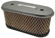 Filtre à Air Convient à Briggs & Stratton 14HP Avant-Garde 491021