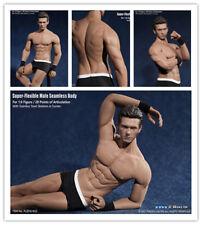 1/6 Male Body Muscular Man Action Figure Toys Steel Seamless Body TBLeague M33