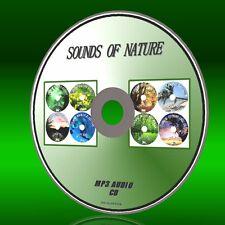 Chill Out Sonidos De Naturaleza 8 Pistas Mp3 aves Insectos Selva Tropical ballenas Etc