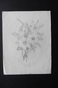 DUTCH SCHOOL 1887 - FINE STUDY OF FLOWERS SIGN. VAN LENNEP - PENCIL DRAWING