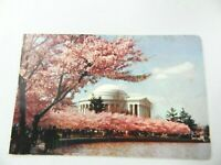 Postcard Jefferson Memorial Washington DC Cherry Tree Blossom Festival Vintage