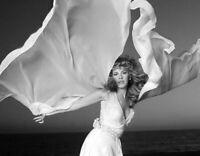 BEAUTIFUL Stevie Nicks of Fleetwood Mac - 8x10 photo!