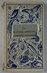 La Faune illustrée Tome IA  Coelentérés spongiaires échinodermes Delagrave 1936