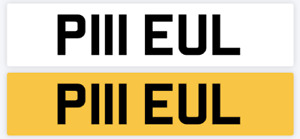 PAUL NUMBER PLATE PRIVATE STYLE SEXY PIL PILL PIUL : ALL FEES PAID  REG P111 EUL