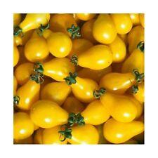 25 Graines de Tomate Cerise Poire Jaune Méthode BIO seeds plantes légumes ancien