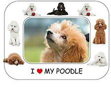 "Poodle Dog Gift - Beautiful Flexible Magnetic Photo Frame  8"" x 6"""
