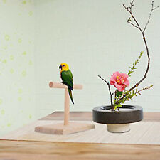 New listing Stable Table Bird Perch Parakeet Playstand T Stand Resting Perches Playstand