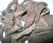 Kakarsingi Herb Powder|Kakad Singhi|Crabs Claw|Pistacia Integerrima|Ayurveda Med
