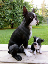 """Boston Terrier Mom And Puppy Dogs Figurine Resin Dogs New 16.5"""" Sits"""