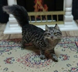 1:12 OOAK Maine Coon Cat Handmade Dollhouse Miniature by Mary Anderson IGMA