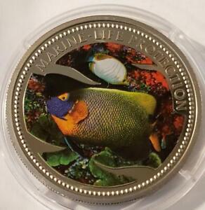 Butterfly Fish 2001 Palau Cuni