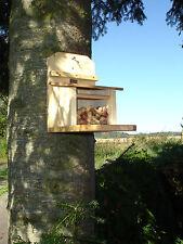 Eichhörnchen Futterhaus-Futterstation-Futterautomat