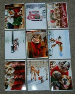 Lot 9 NEW Avanti All Christmas Funny Animal Cat Dog Greeting Cards & Envelopes