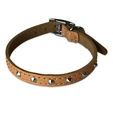"""Dog Collar 1/2"""" Wide Studded Leather Dog Collar with Chrome Hardware"""