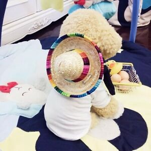 Sombrero Puppy Dog Cat Mexican Straw Hats Pet Clothing Halloween Decor Supplies