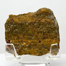 175ct Kabamby Ocean Jasper Rough Natural Mineral Crystal Stone Cab - Madagascar
