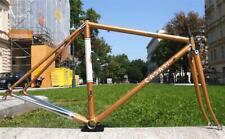 NEW Stylish CASATI Campionissimo Origine Columbus SL Road Bike Frame 48 GOLD
