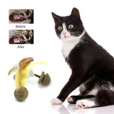 Cat Catnip Toy Soft Feathers Kitten Treat Edible Catnip Cat Pet Toy Chasing Ball