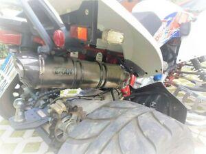EXAN Carbon Cap Edelstahl Sportauspuff für Triton 450 Access AMS 4.38 Xtreme 480