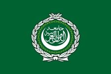 Fahne Flagge Arabische Liga 60 x 90 cm Bootsflagge Premiumqualität