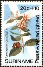 SURINAME -1974- Easter Charities Flower - WILD ANGELICA - MNH Semi-Postal-#B205
