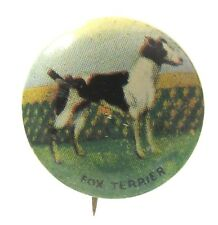 1930's FOX TERRIER Dog tin litho pinback button