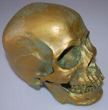 Realistic 1:1 Human Skull Model Anatomical Medical Skeleton Antique Bronze resin