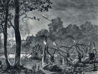 NATIVE GUARANI INDIANS SHOOT FIRE ARROWS FOOTBOW ~ 1892 Art Print Photogravure