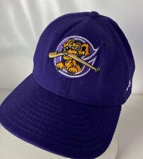 Vintage Charleston Riverdogs Hat Cap MILB Snapback Sewn Logo Class A Yankees