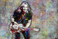 Joe Walsh Of The Eagles 20x30in Poster The Eagles Joe Walsh Print Free Shipping