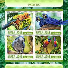 Sierra Leone 2017 MNH Parrots Conures Macaws 4v M/S Parrot Birds Stamps