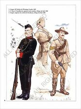PLANCHE UNIFORM PRINT Armée canadienne Canadian Armed Forces Canada Army 1900