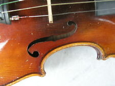 alte braune Geige Ama. Kopie