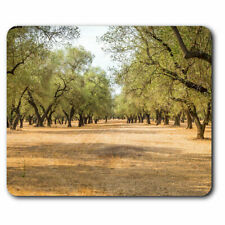 Computer Mouse Mat - Olive Tree Italy Oil Olives Office Gift #3532
