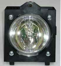 Lamp for Clarity/Planar Puma and Lion 997-3727
