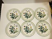 "STUDIO NOVA Vintage Garden Bloom 11"" Dinner Plates- Set of 6- Retails $150"
