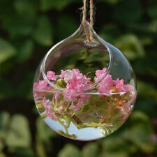 Clear Glass Open Ball Hanging Vase Flower Bottle Terrarium Pot Container DIY