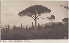 TIVOLI - VILLA ADRIANA - PAESAGGIO (ROMA) NPG N.P.G. 1229