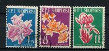 Albania 1961 SG#679-681 Flowers Cto Used Set #A41093