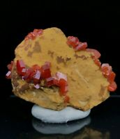 18g Natural Red Vanadinite on Barite Crystal Rare Mineral Specimens Morocco
