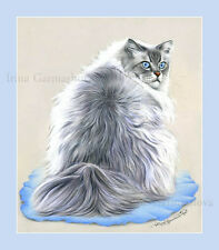 Ragdoll Cat Print Cloud by Irina Garmashova