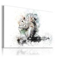 PAINTING DRAWING SQUIRREL GARDEN ANIMALS PRINT Canvas Wall Art R174 MATAGA