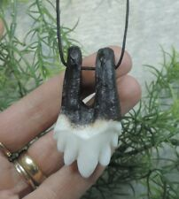 BABY ARCHEOCETE WHALE TOOTH REPLICA JEWERLY/ MEGALODON FOSSIL SHARKS TOOTH TEETH