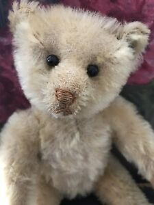 Lovely antique white Steiff bear with ff button
