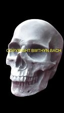 NEW DESIGN LATEX MOULD MOULDS MOLD HIGHLY DETAILED RARE LARGE HUMAN FEMALE SKULL