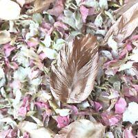 Rose Gold White Pink Wedding Biodegradable Confetti Real Petals Half Litre
