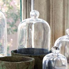 "Glass Cloche Bell Jar French Country Garden Terrarium Cake Dome 11"" x 7.5"""