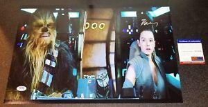 Daisy Ridley Star Wars Autographed Rey Signed Force Awakens 12X18 Photo PSA JSA