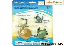 Safari Tortuga de ciclo de vida de plástico sólido Juguete Animal Salvaje Mar Marina Huevo * Nuevo * 💥